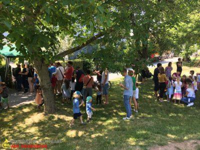 erneute Absage Kinder- & Sommerfest